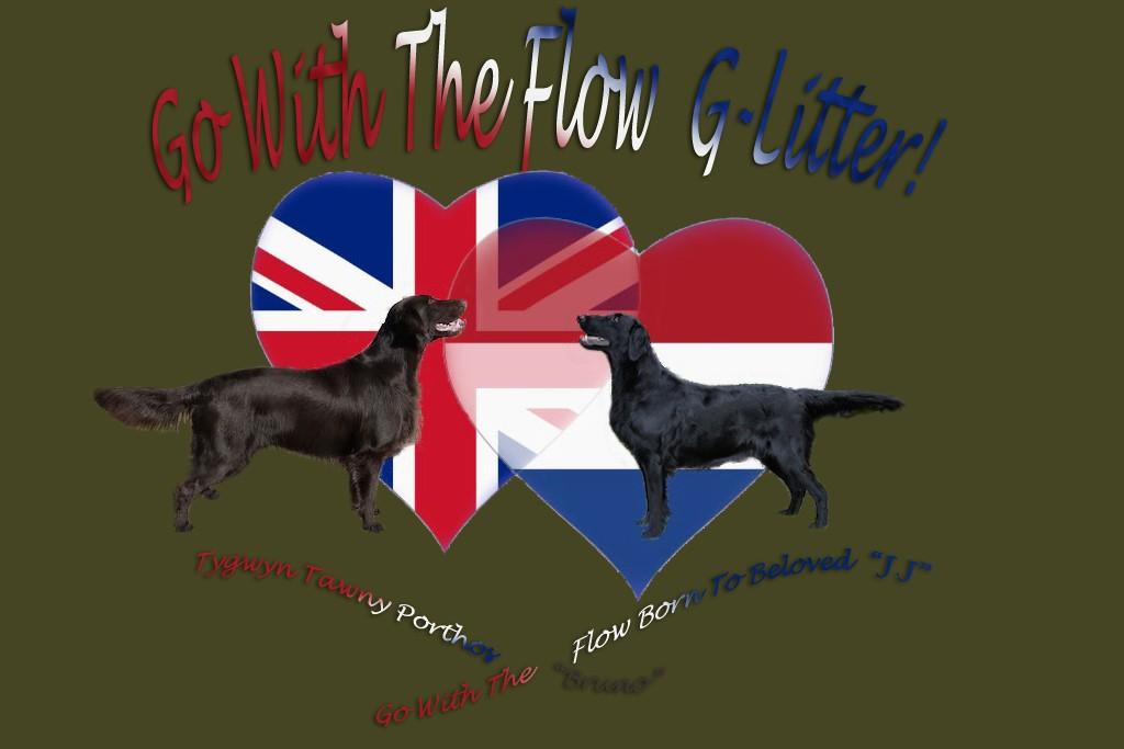 Paars vlaggen hart met B&J g-litter nieuwe site