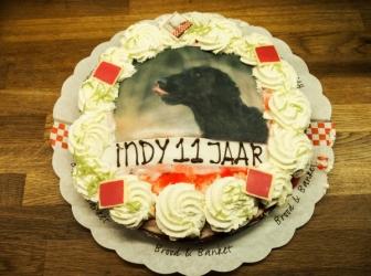 Indy 11 jaar……..