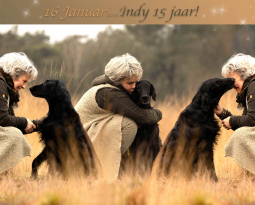 Indy 15 years…!