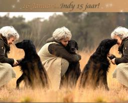 Indy 15 jaar…!