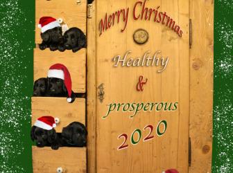 Kerstwensen en uitnodiging…!