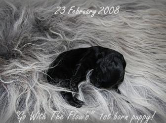 Beloved nest…9 jaar!